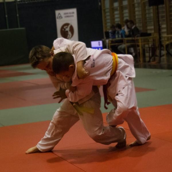 lendava2015_action